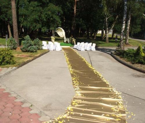 дорожка к свадебной арке и лепестки роз